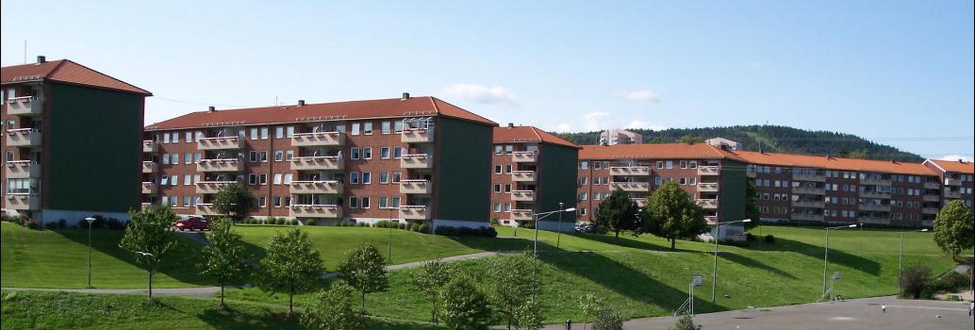 Gammelt bilde av Bjerkedalen før fornyelsen 3.jpg